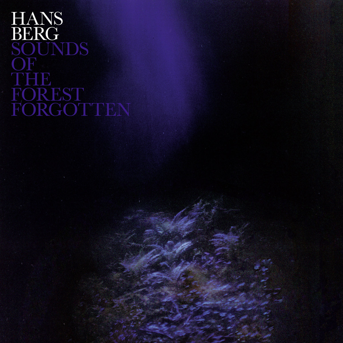 2MR-039 – Hans Berg – Sounds of the Forest Forgotten LP